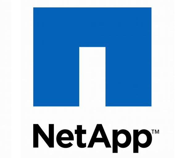 NetApp E-Series Solutions Ready to Face Big Data Spikes 1